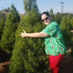 Photo Of Christmas Conifers Colton Ca United States