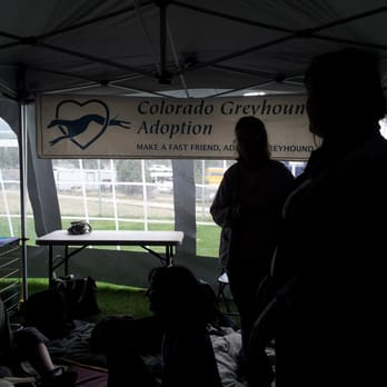 an overview of the process of adoption in the united states With the reduction in children available for adoption in the united states,  the process is designed to protect the child,  adoption legal help adoption overview.