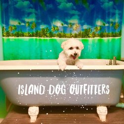 Island Dog Outfitters  Poinsettia Ave Clearwater Beach Fl