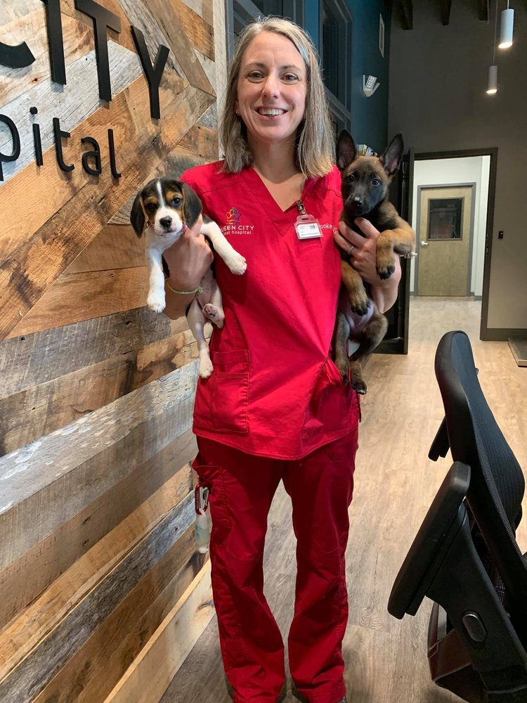 Queen City Animal Hospital: 920 Belmont Ave, Charlotte, NC