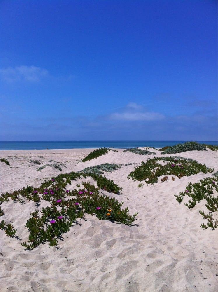 Hollywood Beach Fl Surf Report