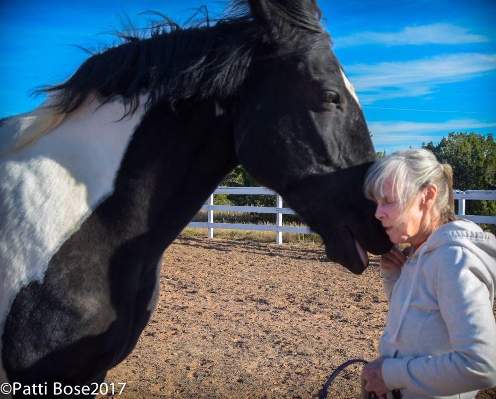Rancho Mariposa: 117 Ranch Rd, Lamy, NM