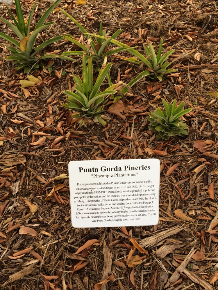 Punta Gorda Nature Park