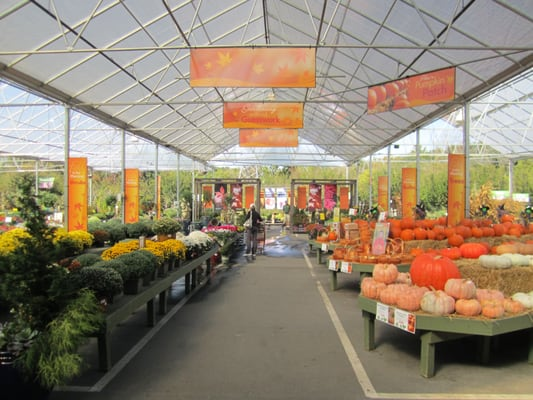 Pike Nursery Near Me: Pike Nurseries - Quail Hollow - Charlotte, NC