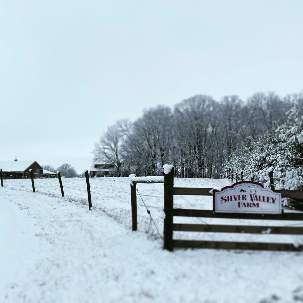 Silver Valley Farm: 4290 County Rd 650, Crawfordsville, IN