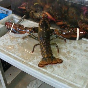 Om seafood market 49 photos 21 reviews seafood for Portland oregon fish market