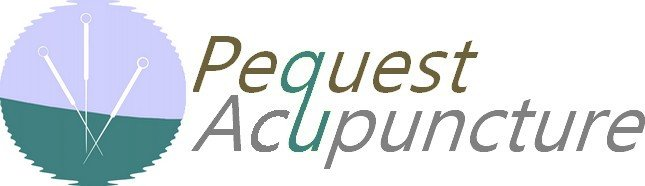 Pequest Acupuncture: 4 Greenwich St, Belvidere, NJ