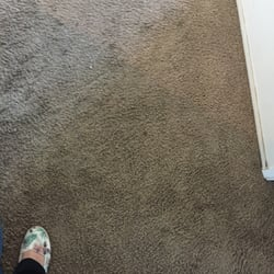Tarantino S Carpet Cleaning 45 Reviews Carpet Cleaning