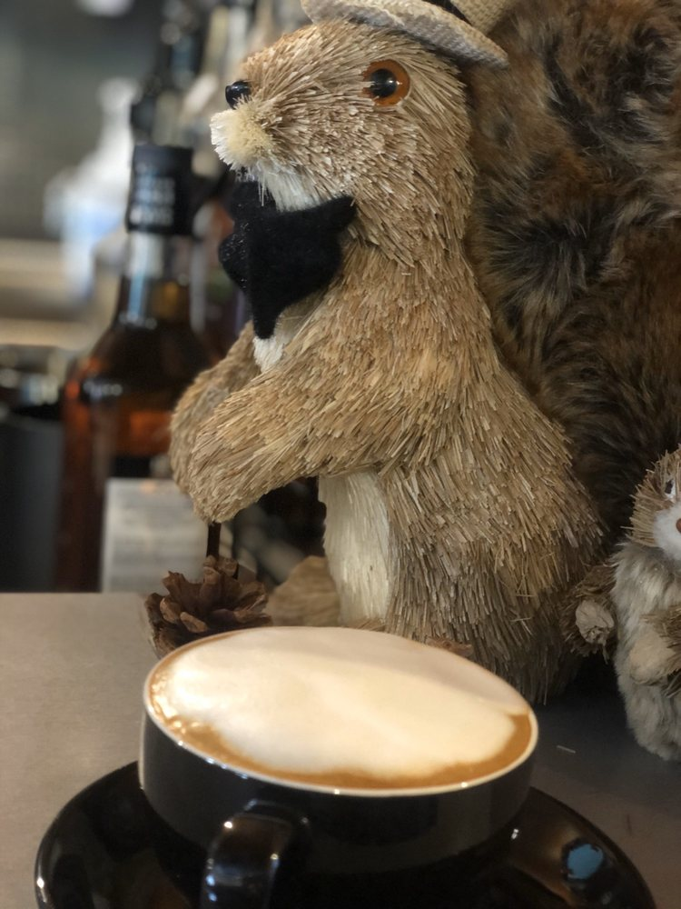 Flying Squirrel Coffee Co: 110 N Main St, Mansfield, TX