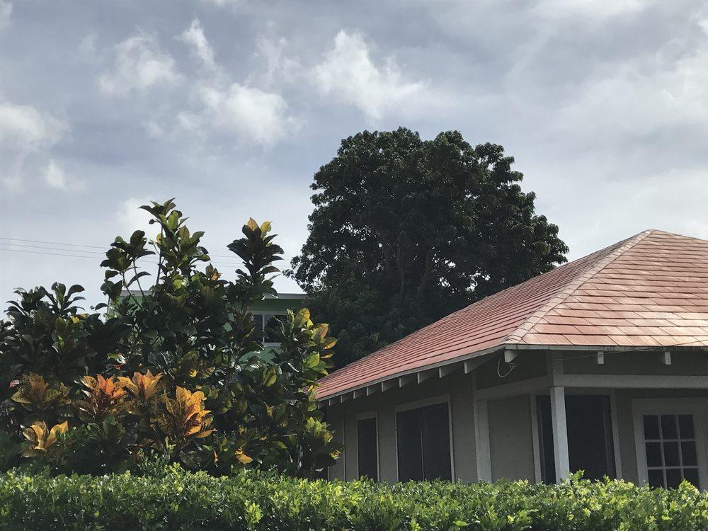 Ohana Tree Services
