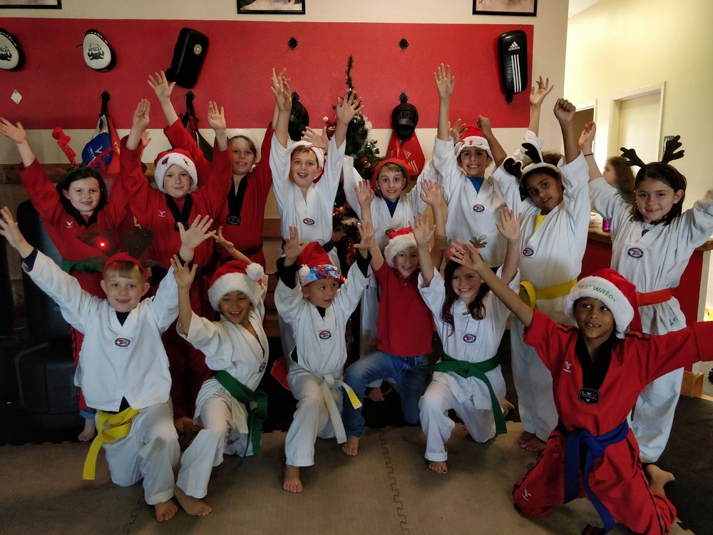 J Park Tae Kwon Do: 26246 US Hwy 19 N, Clearwater, FL
