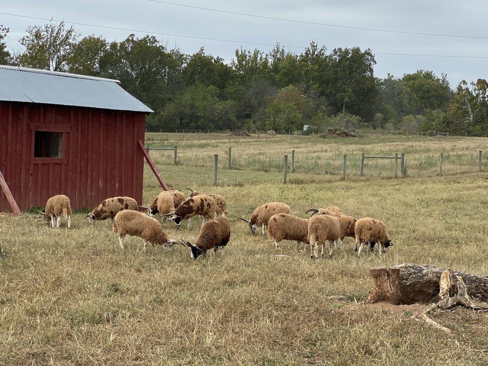 Temple Hall Farm Park: 15789 Temple Hall Ln, Leesburg, VA