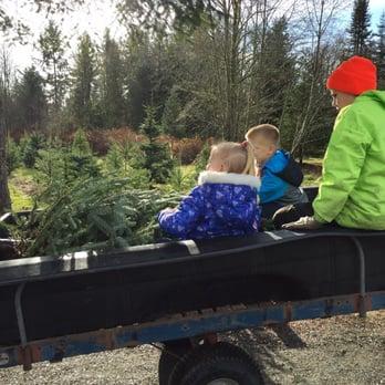 Photo Of Wilson Hill Tree Farm Christmas Trees U Cut   Maple Valley, WA
