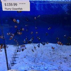 Bay Bridge Aquarium and Pet - (New) 39 Photos & 39 Reviews