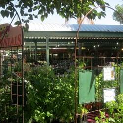 Superb Photo Of Harlow Gardens   Tucson, AZ, United States. So Green And Lush