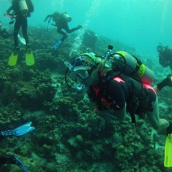 Photo Of Nu Horizons Dive Travel Myrtle Beach Sc United States