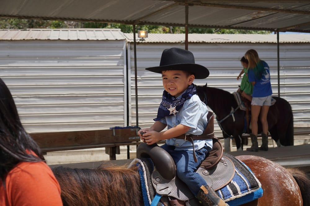 Pony Time At Lakewood Equestrian Center 20 Photos