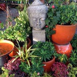 photo of hidden gardens nursery aptos ca united states - Hidden Garden