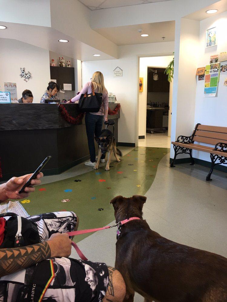 Mililani Town Center Pet Clinic