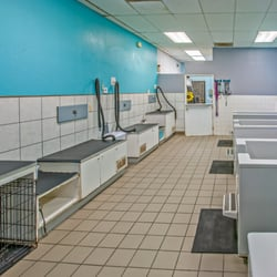 Dirty paws pet wash 45 photos 90 reviews pet groomers 6030 photo of dirty paws pet wash san diego ca united states solutioingenieria Choice Image