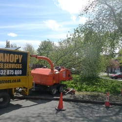Photo of Canopy Tree Services - Derby United Kingdom & Canopy Tree Services - Tree surgeons - Derby Road Derby - Phone ...
