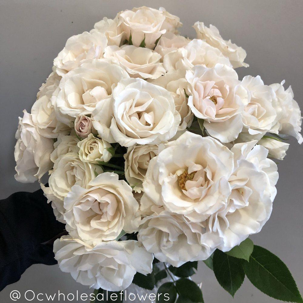 Orange County Wholesale Flowers 772 Photos 103 Reviews