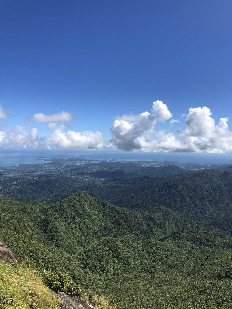 El Yunque Rainforest: Sierra de Luquillo, Luquillo, PR