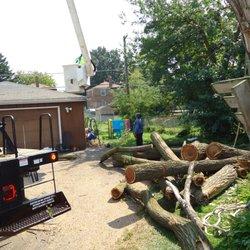 Winkler's Tree & Landscaping - 17 Photos - Landscaping - Bellwood