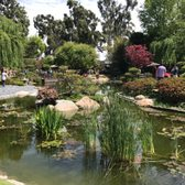 Earl Burns Miller Japanese Garden 1055 Photos 267 Reviews Venues Event Spaces 1250