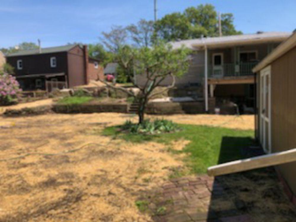 M&M Tree & Landscape LLC: 805 Old State Rd, Apollo, PA