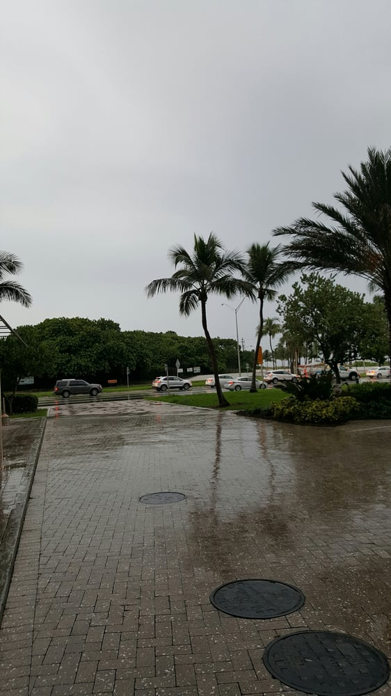 RAINING IN FORT LAUDERDALE BUT FUN AND BEAUTIFUL