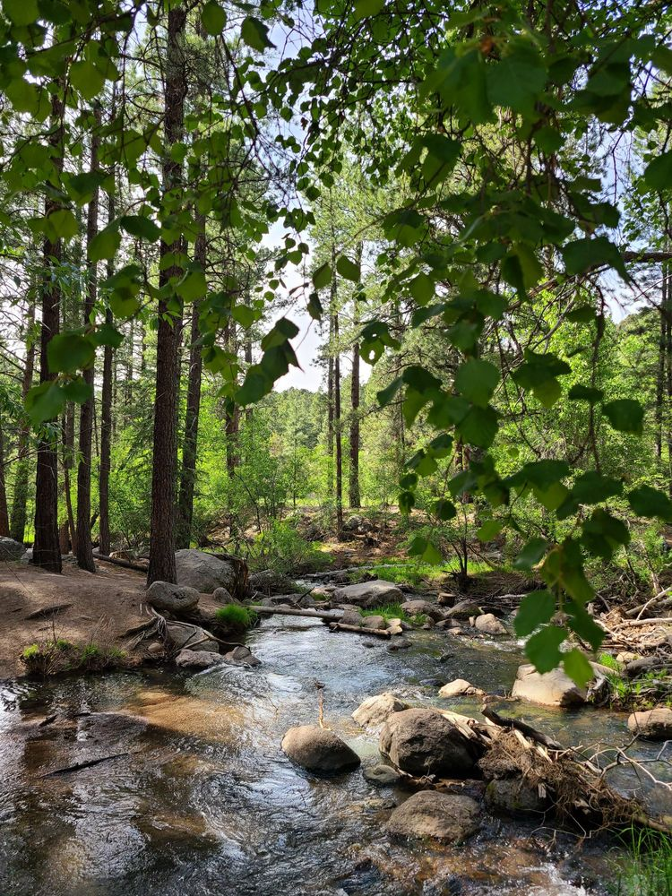 Pine Valley Recreation Area: E Main St, Pine Valley, UT