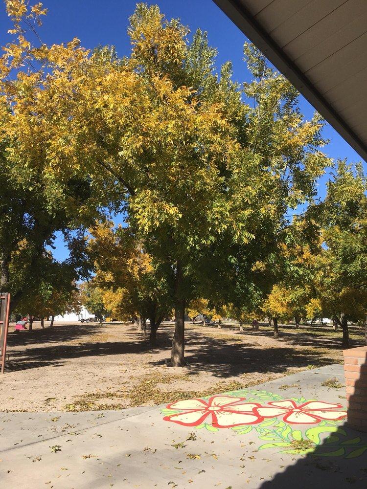Lee's Farm Fresh Pecans: 2890 Marguerite Road, Willcox, AZ