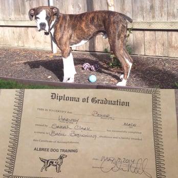 Dog Training Classes Sacramento Ca
