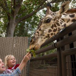 Los Angeles Zoo Botanical Gardens 5065 Photos 1484 Reviews