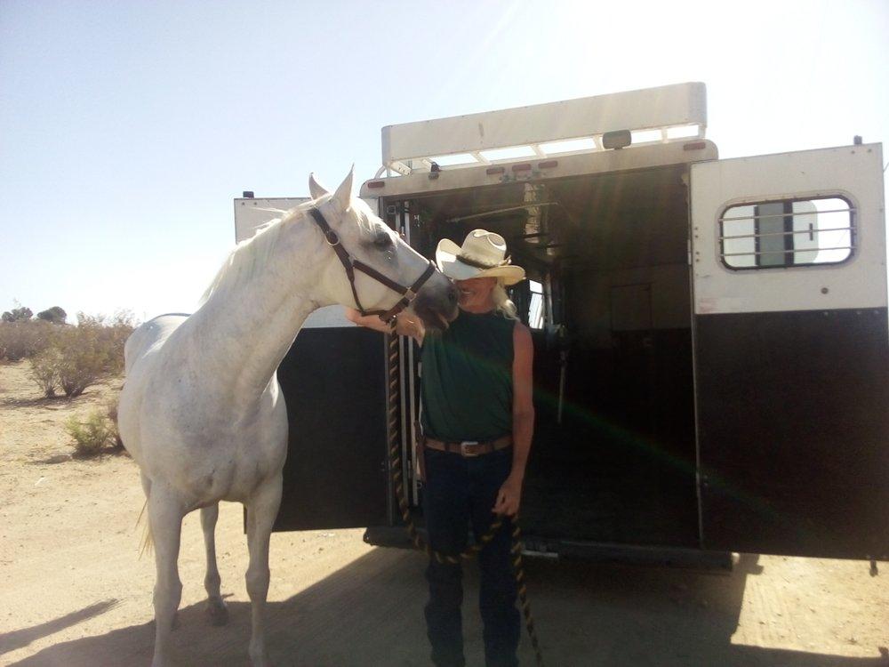 Pegasus Equine Transport: Chiloquin, OR