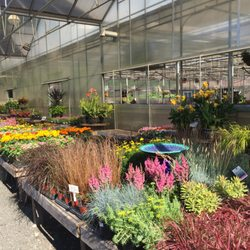 Photo Of Colonial Nursery Lincroft Nj United States New Look To The