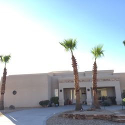 The Palm Tree Guy Get Quote 11 Photos Tree Services Lake
