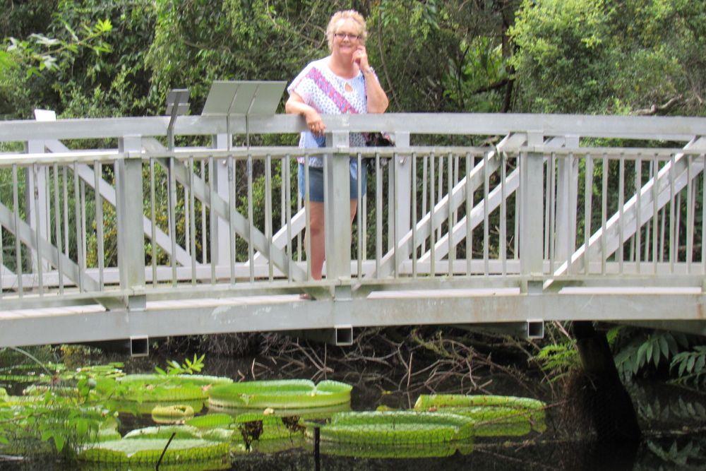 Kanapaha Botanical Gardens: 4700 SW 58th Dr, Gainesville, FL
