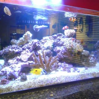 Jofish Aquarium Service Center - CLOSED - Aquarium Services