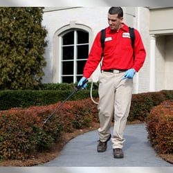 HonorGuard Pest Management - 11535 Park Woods Cir