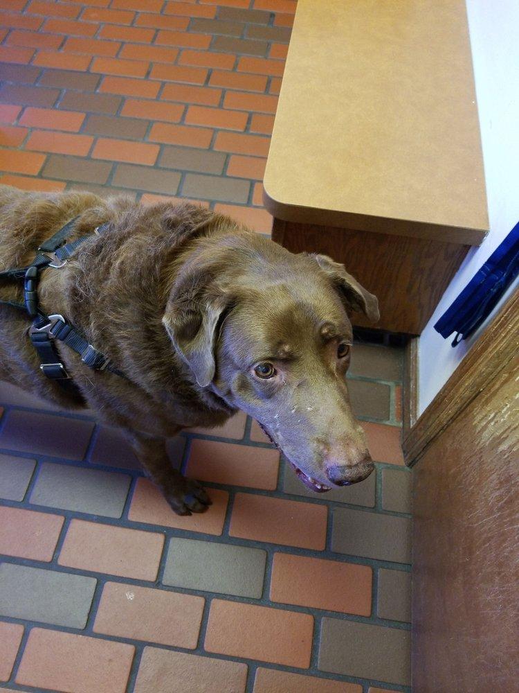 Pet's Best Friend Veterinary Hospital