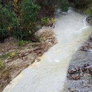 Prairie Creek Park - 56 Photos - Parks - North Dallas ...