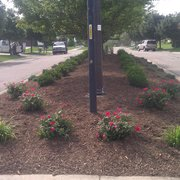 3 Tiered Wall Photo Of Superior Lawn Care Ypsilanti Mi United States Planting