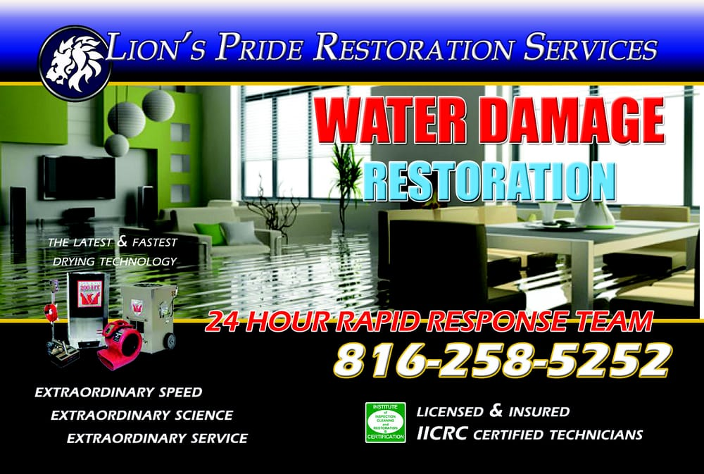 Lion's Pride Carpet Care & Restoration: 710 W South St, Harrisonville, MO