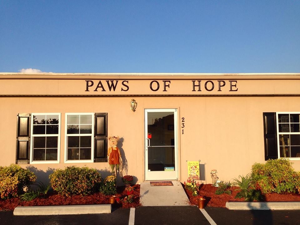 Paws Of Hope Animal Wellness Center: 231 Hwy 19E, Bluff City, TN