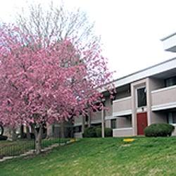 Top 10 Best No Credit Check Apartments In Colorado Springs
