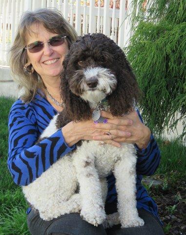 Everett Veterinary Hospital & Boarding House | 632 Oak Ave, Klamath Falls, OR, 97601 | +1 (541) 884-2926