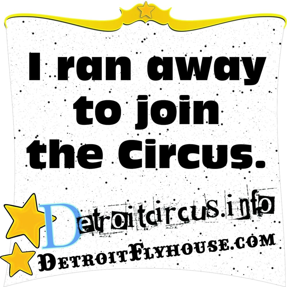 detroit flyhouse circus school 12 beitr ge spezialisierte schulen 1321 watson eastern. Black Bedroom Furniture Sets. Home Design Ideas