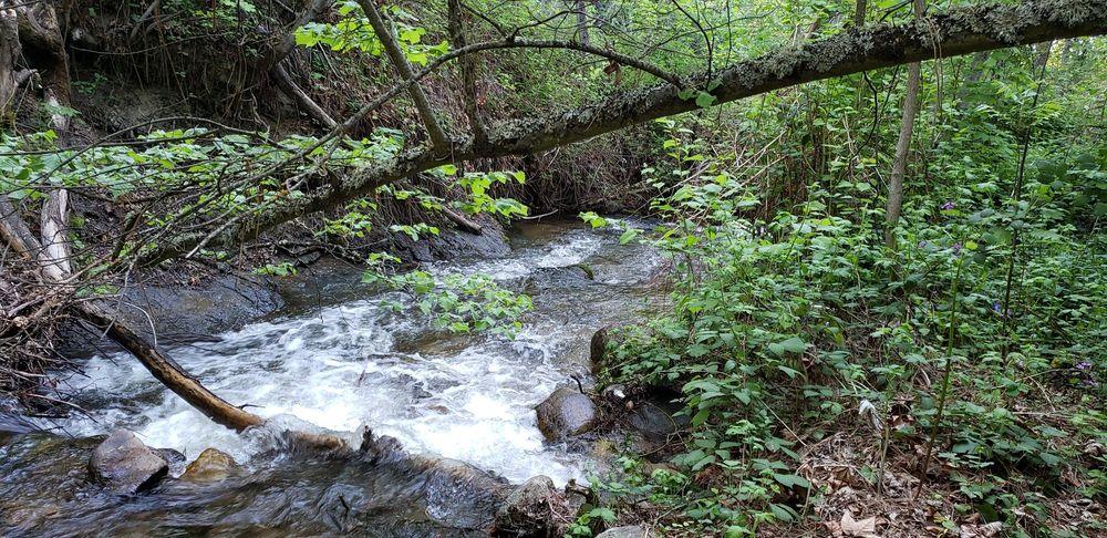 Ashland Creekside Campground: 5310 Hwy 66, Ashland, OR